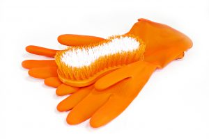 Brush and Hand Gloves