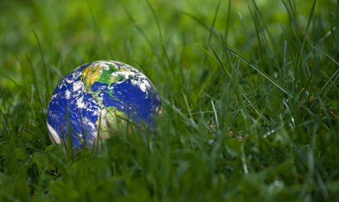 Conceptual image of the earth laying in the tall green grass.  Shallow depth of field.  Earth image courtesy of NASA.