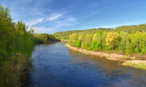 Gauja river in spring morning in Sigulda, Lativa